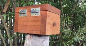 Locate hive